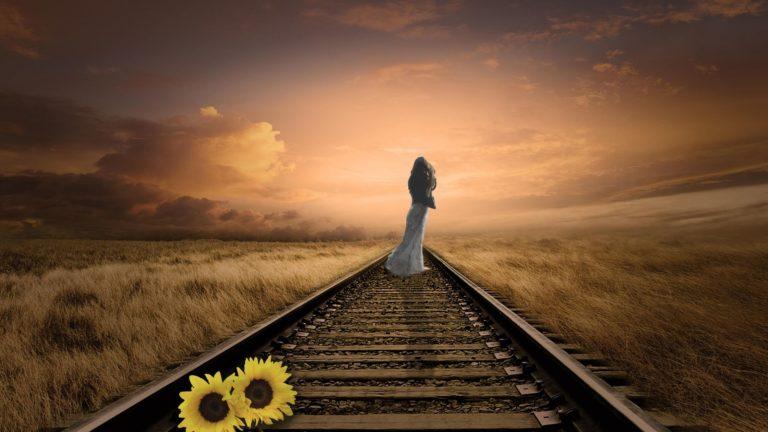 Train Tracks Senior Moment
